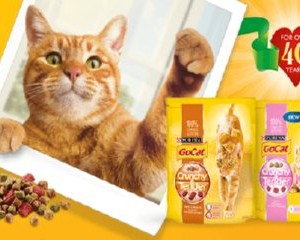 Free Go-Cat Samples