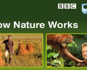 Free How Nature Works Booklet