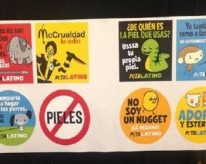 Free PETA Animal Stickers